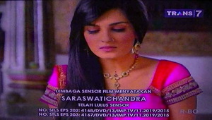 Saraswatichandra episode 202 203 00