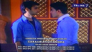 Saraswatichandra episode 220 221 00