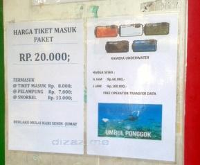 Harga Sewa Perlengkapan Snorkeling