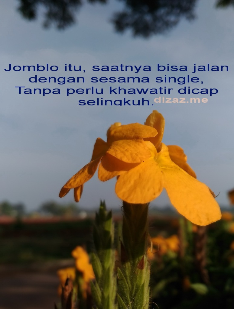 Jomblo Single Bahagia